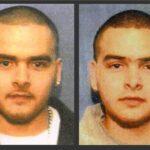 Los mellizos, los narcos que traicionaron al Chapo, y su red de lavado